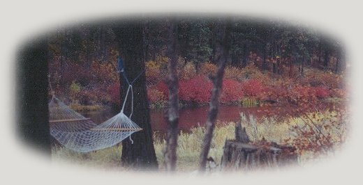 tree houses, treehouses, the cottage, cabins, rv camping and vacation rentals at gathering light ... a retreat located in southern oregon near crater lake national park and klamath basin birding trails.